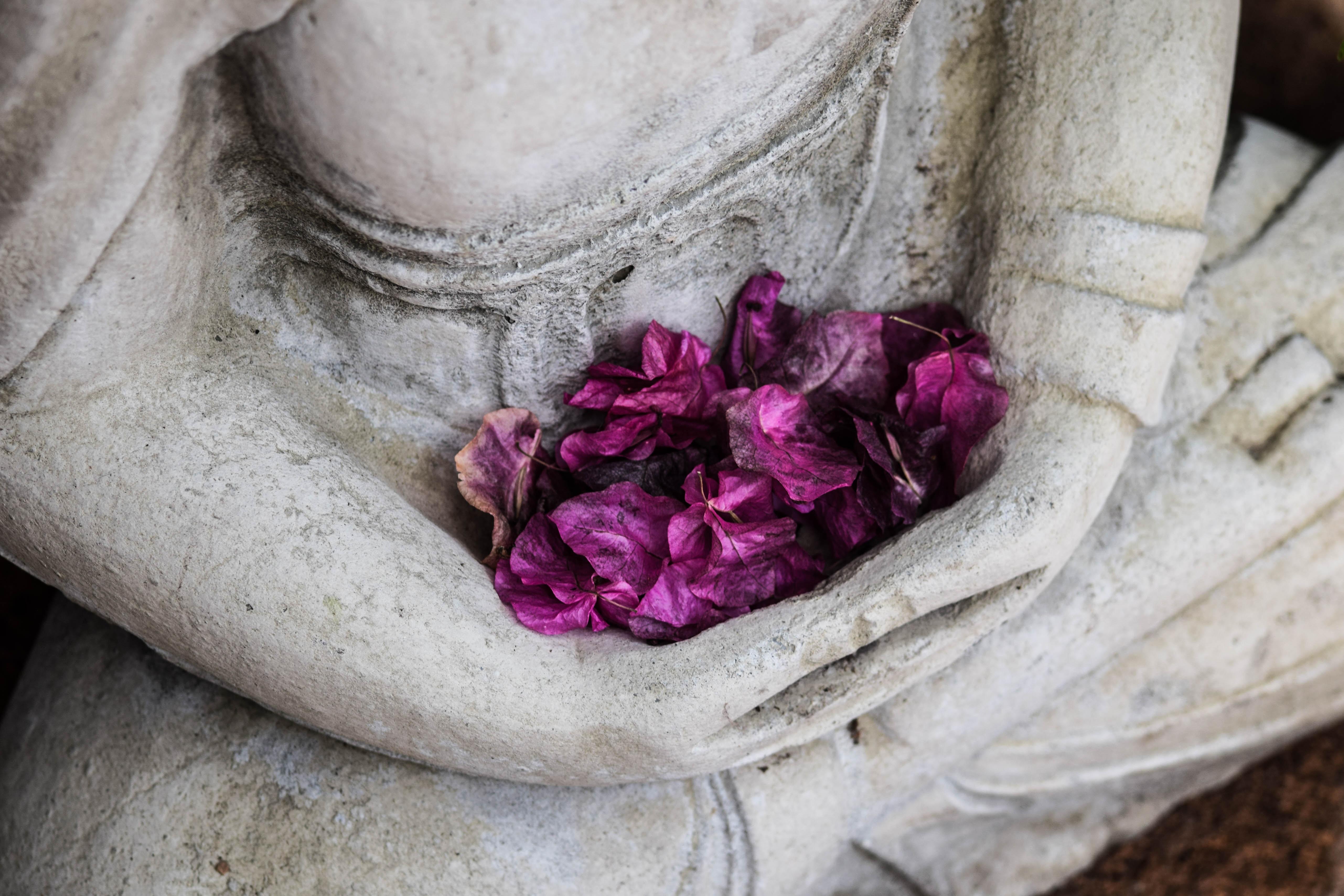 Qué es la meditación zen